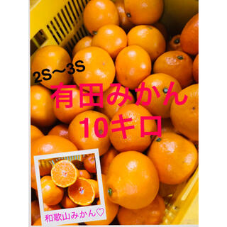 和歌山有田みかん2.3S小粒みかん10キロ 残り僅か(フルーツ)