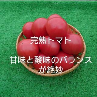 完熟トマト桃太郎ヨーク2.5キロ(野菜)