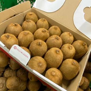 ◆新潟県産キウイフルーツ ◆大きめサイズ