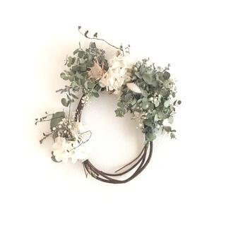 小葉ユーカリ dried flower  oval wreathe(ドライフラワー)