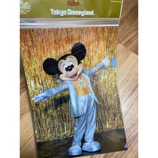 ディズニー(Disney)の【入手困難】ワンマンズドリーム クリアホルダー(クリアファイル)