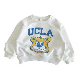 UCLAのトレイナー