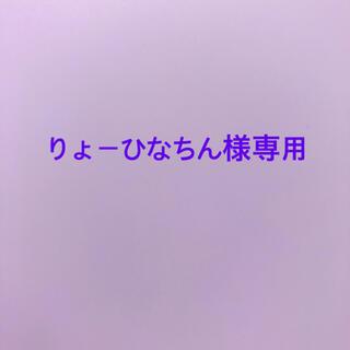 りょーひなちん様専用 (クリアファイル)