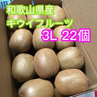 ゆず様専用 芯が甘い!【二級品】和歌山県産キウイフルーツ 3L 22個入り(フルーツ)
