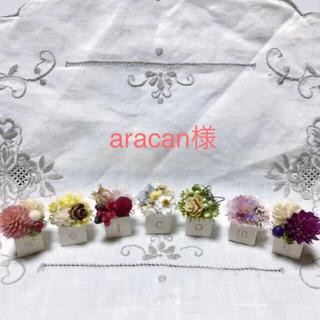 aracan様専用です♪  木の実 / ドライフラワー / 花材(ドライフラワー)