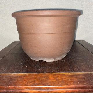 盆栽鉢 紫泥 丸鉢 深鉢 植木鉢(その他)