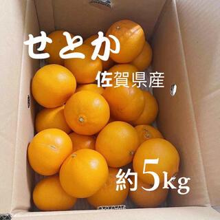 せとか 佐賀産 約5kg x 2 家庭用(フルーツ)