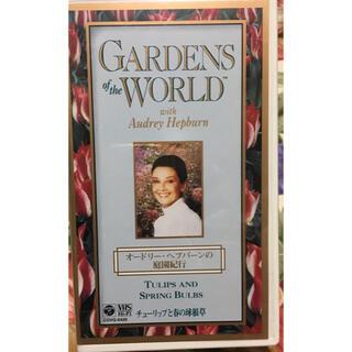 コロンビア(Columbia)の【VHS】オードリー・ヘップバーンの庭園紀行 チューリップと春の球根草(趣味/実用)