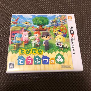 ニンテンドウ(任天堂)のとびだせ どうぶつの森 3DS(その他)