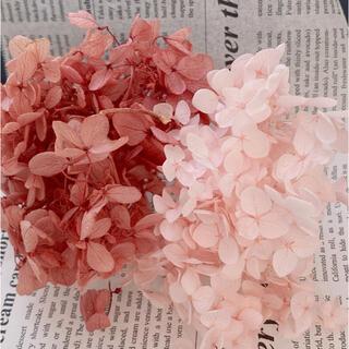【花材】アジサイ ふんわりピンクセット【A】(ドライフラワー)