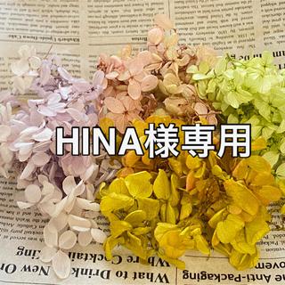 【HINA様専用】アジサイ カラーセット 【E】他(ドライフラワー)