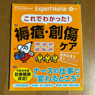 Expert Nurse (エキスパートナース) 2018年 06月号(専門誌)