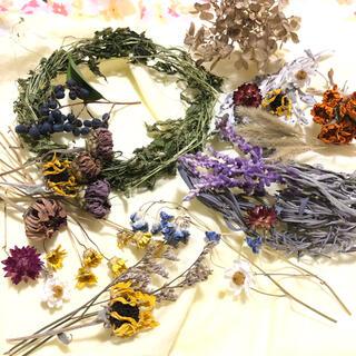[お得パック]ドライフラワー 15種類 リース  花材 素材 ナチュラル G (ドライフラワー)