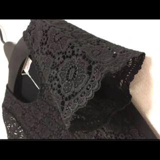 ギャラリービスコンティ(GALLERY VISCONTI)の前立てフラワーレース後ろストレッチカットソー素材ブラウス(シャツ/ブラウス(半袖/袖なし))