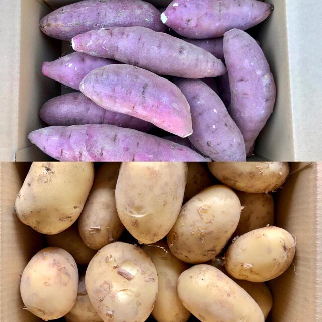 【鹿児島産】甘塩サツマイモ7キロ・甘塩ジャガイモ3キロ^_^ 食品/飲料/酒の食品(野菜)の商品写真