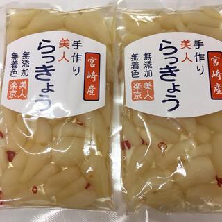 宮崎産 美人らっきょう2袋セット(漬物)