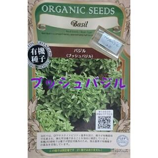 ブッシュバジル 固定種 有機種子 野菜の種 ハーブの種 家庭菜園 水耕栽培(野菜)