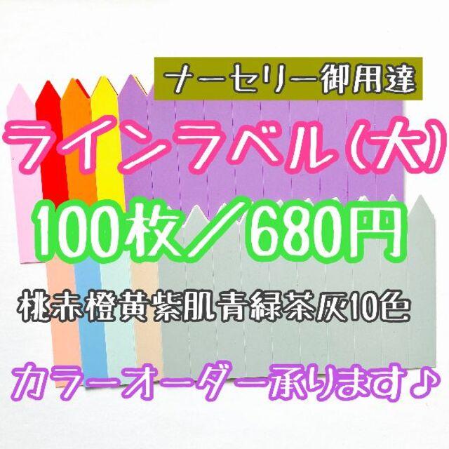 ◎100枚◎ 10色 (大) ラインラベル 園芸ラベル カラーラベル ハンドメイドのフラワー/ガーデン(プランター)の商品写真