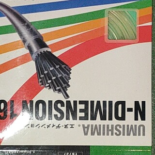 ゴーセン(GOSEN)のGOSEN UMISHIMA N-DIMENSION 16(ラケット)
