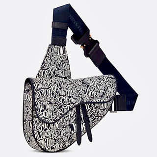 Dior - コラボ DIOR AND SHAWN グレインドカーフスキン SADDLEバッグ
