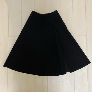 ダブルスタンダードクロージング(DOUBLE STANDARD CLOTHING)のダブルスタンダードクロージング フレアスカート(ひざ丈スカート)