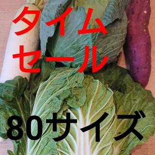 ★80センチ★5キロ入り★野菜詰め合わせセット★(野菜)