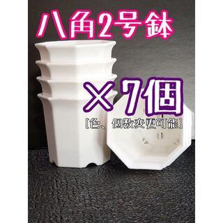 八角鉢 ◎7個◎ ホワイト 2号 2寸 プラ鉢 ミニ鉢 シャトル鉢(プランター)