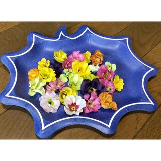 銀の紫陽花が作ったふりふりのプリムラ  バラ咲きジュリアンのドライフラワー ①(ドライフラワー)