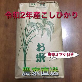 コシヒカリ 玄米10kg+野菜(米/穀物)