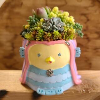 ゆいゆい様 多肉植物アマビエ鉢ピンク(その他)