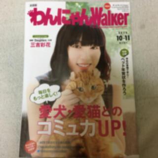 三吉彩花 ☆ わんにゃんWalker(アート/エンタメ/ホビー)