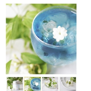 青いジャスミンとマスカットの緑茶 ひまり(茶)