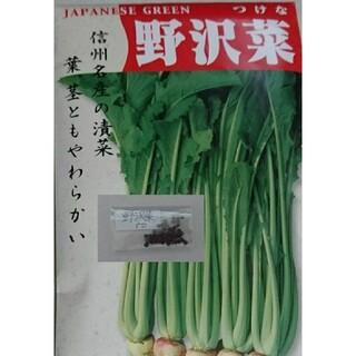 野沢菜 固定種 有機種子 野菜の種 ハーブの種 家庭菜園 水耕栽培(野菜)