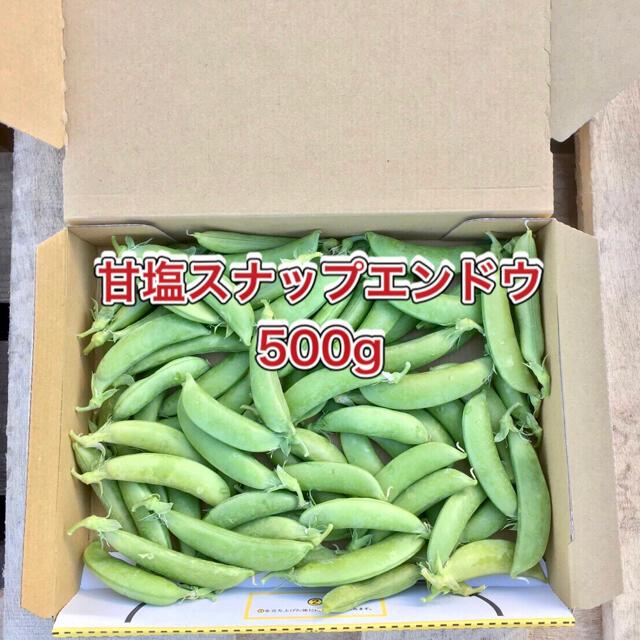 【鹿児島産】甘塩スナップエンドウ箱込み500g^_^ 食品/飲料/酒の食品(野菜)の商品写真