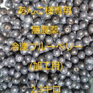 無農薬冷凍ブルーベリー(加工用)2.3キロ(フルーツ)