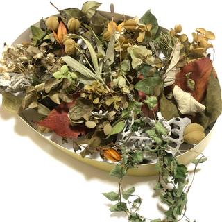[お得パック]グリーン系の素材 ナチュラル 花材 自然 ドライフラワー K(ドライフラワー)
