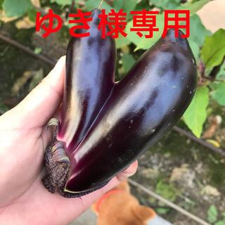 ナス🍆詰め合わせ(野菜)