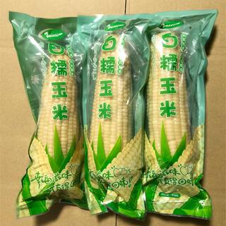 11本 白糯玉米 真空とうもろこし 11本(野菜)