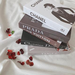 ディオール(Dior)のダミーブック 海外インテリア 韓国 海外雑貨 インテリア小物 DIOR(その他)