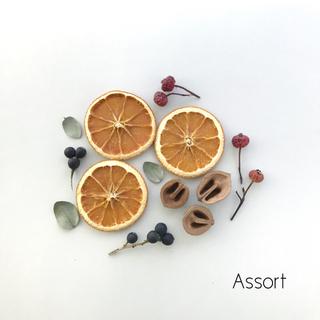 ドライハーブ&オレンジ / 花材 アソート #1(ドライフラワー)