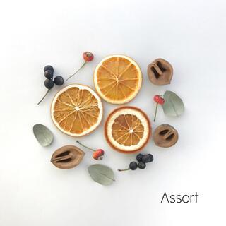 ドライハーブ&オレンジ / 花材 アソート #2(ドライフラワー)