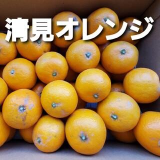 熊本産 清見オレンジ 10キロ(フルーツ)