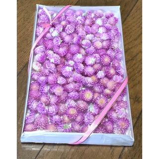 100円お値引き‼️銀の紫陽花が作った可愛い桜ピンクの千日紅(ドライフラワー)