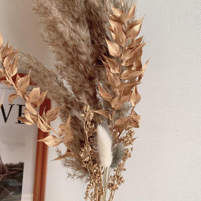 パンパスグラス テールリード グレー ブラウン 韓国インテリア ゴールド ハンドメイドのフラワー/ガーデン(ドライフラワー)の商品写真