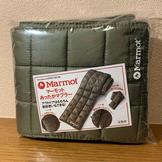 MARMOT - MonoMax モノマックス 増刊号 付録 2020/12