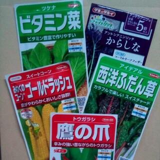 春まき 野菜の種子 5種類セット(野菜)