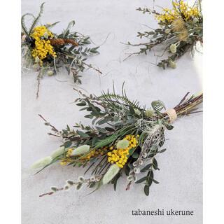 若草色のラグラスとミモザが春の陽気に包まれる 立春 スワッグ ドライフラワー(ドライフラワー)