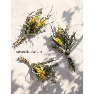 グレビレアとミモザを野山の蕾と織り束ねた 立春のカタチ スワッグ ドライフラワー(ドライフラワー)