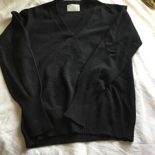 アニオナ(Agnona)の【AGNONA】アニオナ カシミア100%のシンプルなVネックセーター(ニット/セーター)