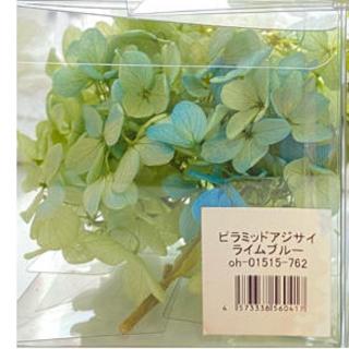 【花材】アジサイ ライムブルー (ドライフラワー)